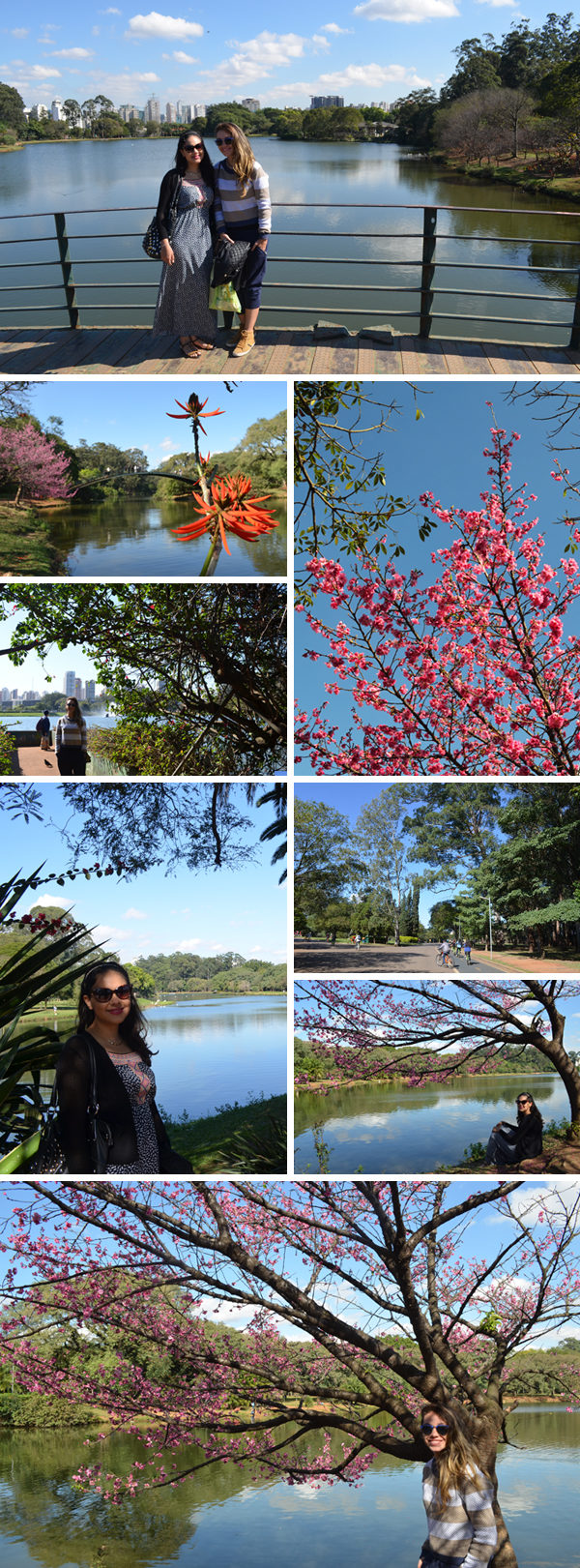 Primeira vez em São Paulo - Parque do Ibirapuera
