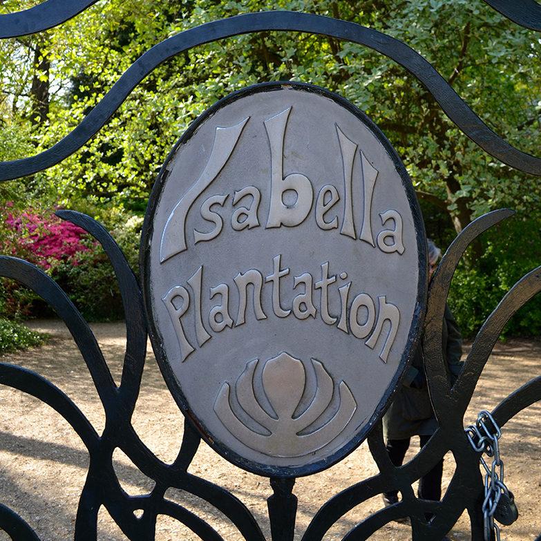 Isabella Plantation jardim em Londres